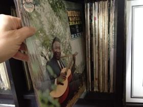 Muddy, Brass & The Blues/マディ・ウォーターズ