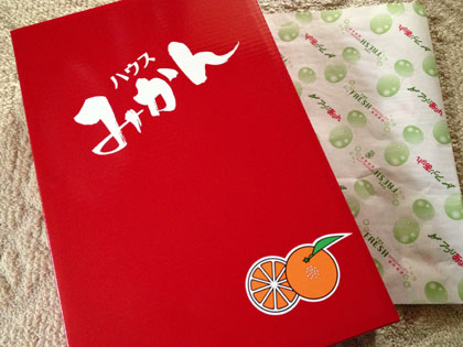 blog2013-08-02-13.26.00