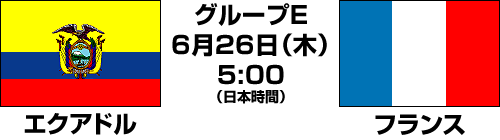 2014FIFAワールドカップ ブラジル大会【グループE最終節】エクアドル vs フランス テレビ観戦記(2014.6.26)