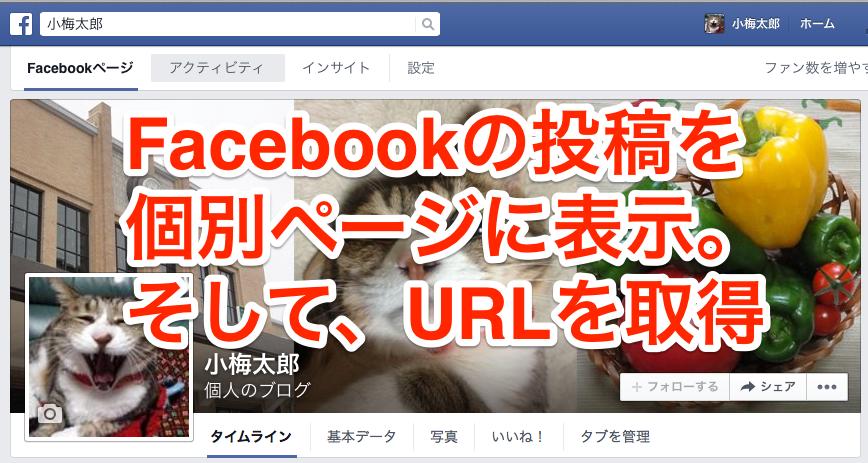 今さら聞けない、Facebookの投稿を単独で個別ページに表示させるにはどうするの?URLを取得したいんですが…