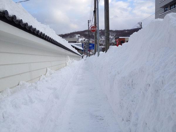 小樽は12月というのに凄い積雪になってます〜一時は100cm越え