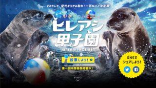 開催中の「第一回ヒレアシ甲子園」におたる水族館からトドのモンキチがエントリーしてます。投票は4月15日まで