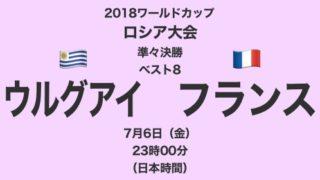 2018ワールドカップロシア大会【準々決勝・ベスト8】ウルグアイ対フランス テレビ観戦記(2018.7.6)